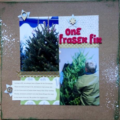 one_fraser_fir